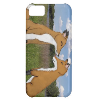 Fox Lovers iPhone 5C Case