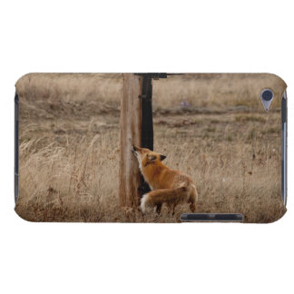 Fox Loves Utility Pole iPod Touch Case
