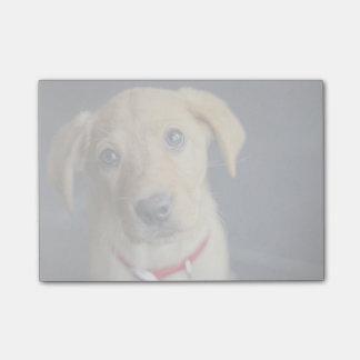 Fox Red Labrador Puppy Post-it Notes