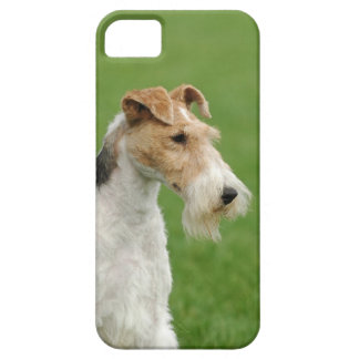 Fox terrier iPhone 5 cases