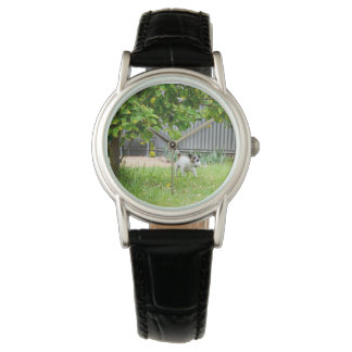 Fox_Terrier_Scare_Face_Ladies_Black_Leather_Watch Wristwatches