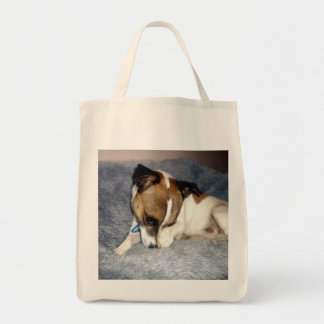 Fox_Terrier_So_Shy,_Grocery_Tote_Bag.