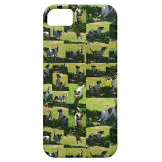 Fox Terrier, The Hard Day, iPhone 5 Cover