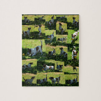 Fox Terrier, The Hard Day, Photo Collage, Jigsaw Puzzle