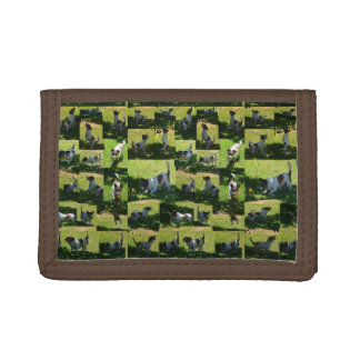 Fox Terrier The Long Hard Day Photo Collage, Tri-fold Wallets