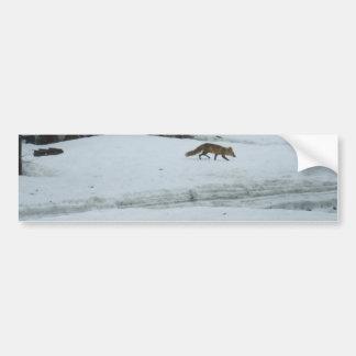 Fox Walking in Snow Bumper Sticker