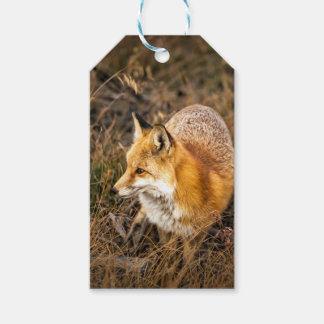 fox wrapping paper, woodland gift wrap gift tags