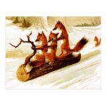 Foxes Sledding through the Snow on a Log Postcard