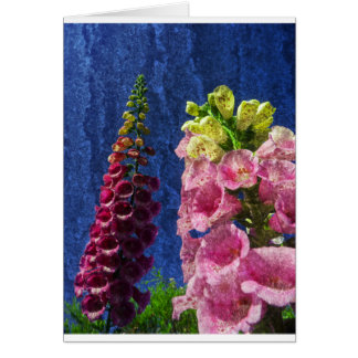 Foxglove flowers on texture with frame greeting card