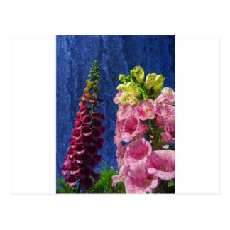 Foxglove flowers on texture with frame postcard