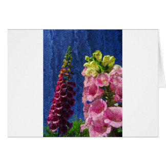 Foxgloves on texture greeting card