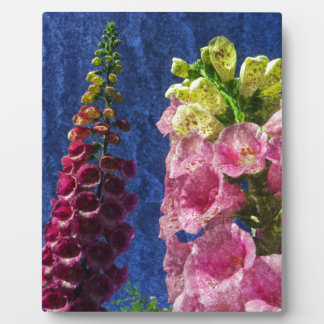 Foxgloves on texture plaques