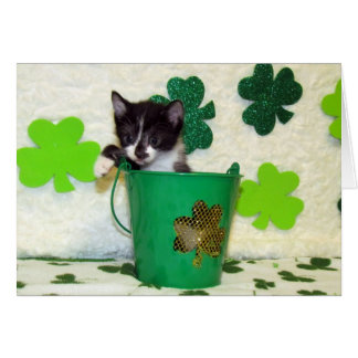 Foxi Moxi's St. Patrick's Day Greeting Card