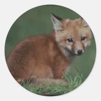 foxkit classic round sticker