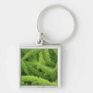 Foxtail Fern, Asparagus densiflorus myers Silver-Colored Square Key Ring
