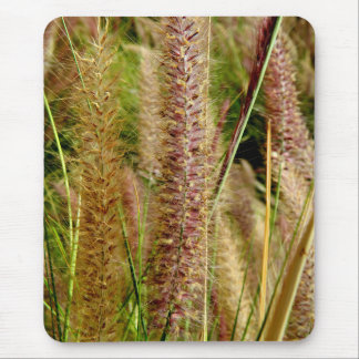 Foxtail grass macro photography picture mouse mat