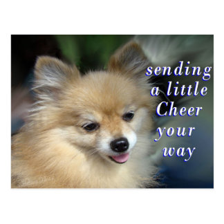 Foxy Cheery Postcard- add your words Postcard