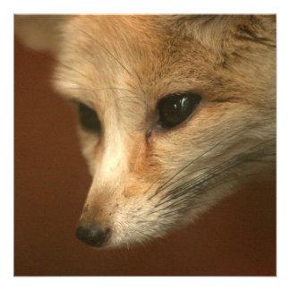 Foxy Fox Invites