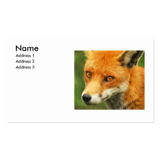 Foxy Lady Pack Of Standard Business Cards