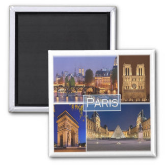 FR * France - Paris Magnet