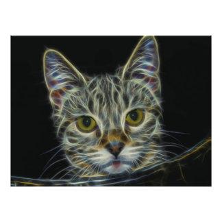 Fractal Cat Photograph