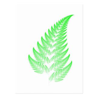 Fractal fern leaf postcard