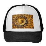Fractal.jpg Mesh Hat
