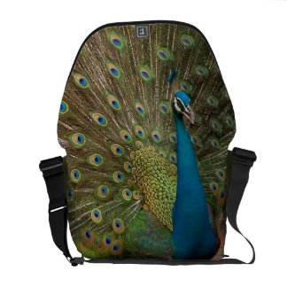 fractal peacock messanger bag commuter bags