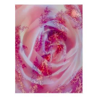 fractal rose, pink post card