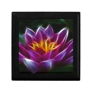 Fractalius Water Lilly Gift Box