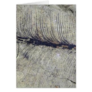 Fragile Fossil Plant Leaf Greeting Card
