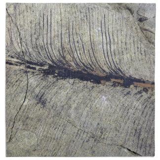 Fragile Fossil Plant Leaf Cloth Napkins