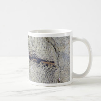Fragile Fossil Plant Leaf Basic White Mug