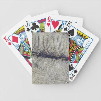 Fragile Fossil Plant Leaf Poker Cards
