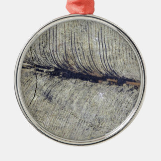 Fragile Fossil Plant Leaf Silver-Colored Round Decoration