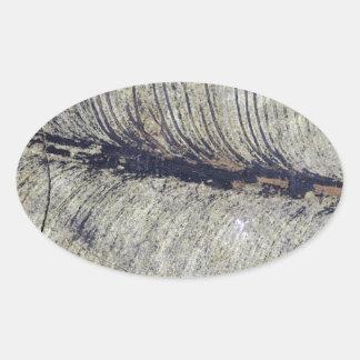 Fragile Fossil Plant Leaf Oval Sticker