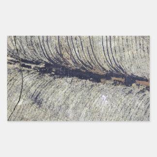 Fragile Fossil Plant Leaf Rectangular Sticker