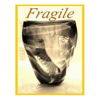 Fragile Tiger Post Cards