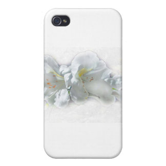 FRAGILE WONDERS iPhone 4 CASES