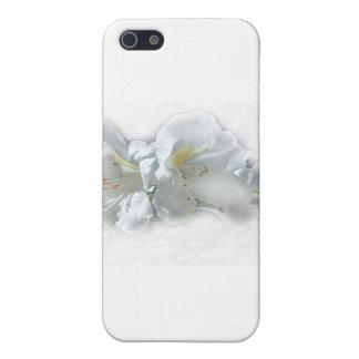 FRAGILE WONDERS iPhone 5 CASE