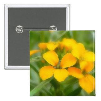 Fragrant Orange Cheiranthus Pin