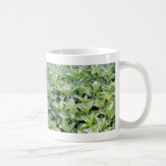 Fragrant Oregano Mug