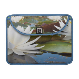 Fragrant Water Lily (Nymphaea Odorata) On Caddo Sleeves For MacBooks