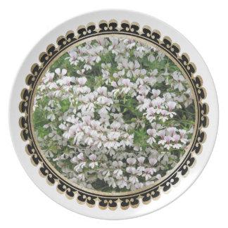Framed Flowers #2 Plate