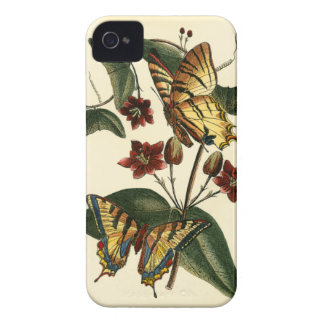 Framed Painting of Butterflies and Flowers iPhone 4 Cover