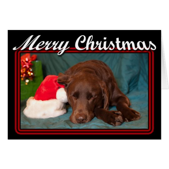 Framed Sleeping Chocolate Lab With Santa Hat Photo