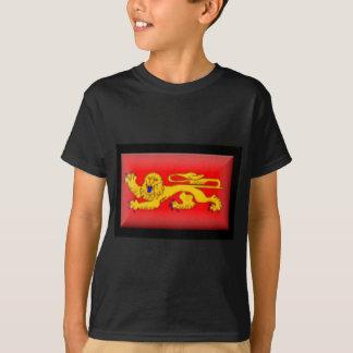 France-Aquitaine Flag T-Shirt