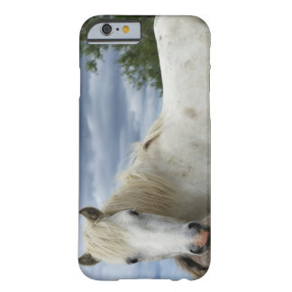 France Barely There iPhone 6 Case