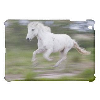 France, Bouches du Rhone, Natural Regional Park 2 iPad Mini Covers
