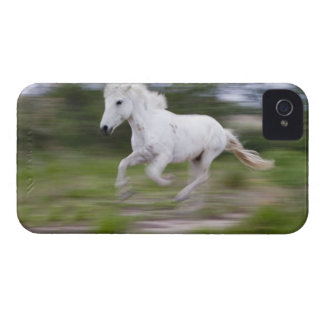 France, Bouches du Rhone, Natural Regional Park 2 iPhone 4 Case-Mate Case